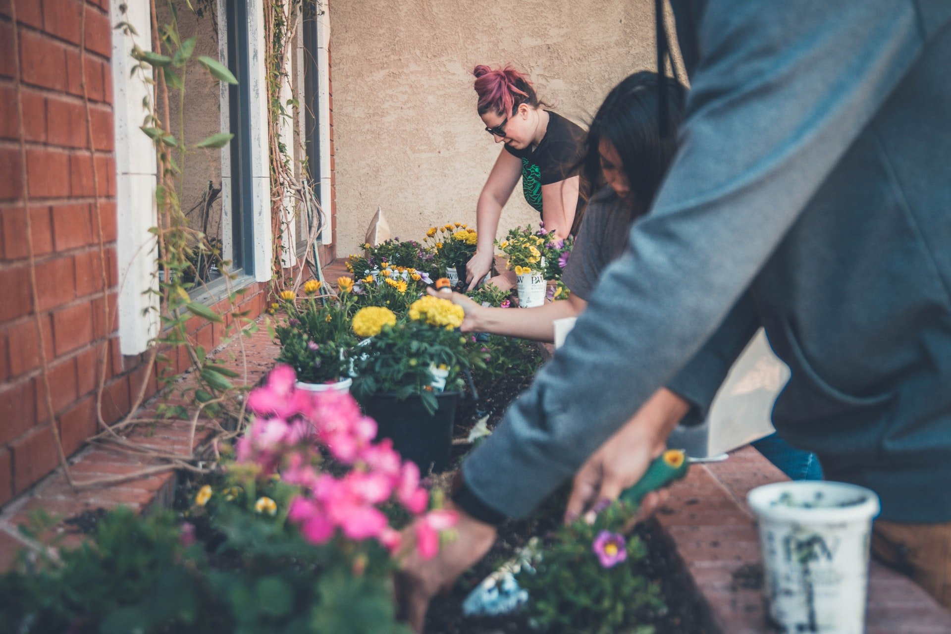 Best Garden Tool Essentials