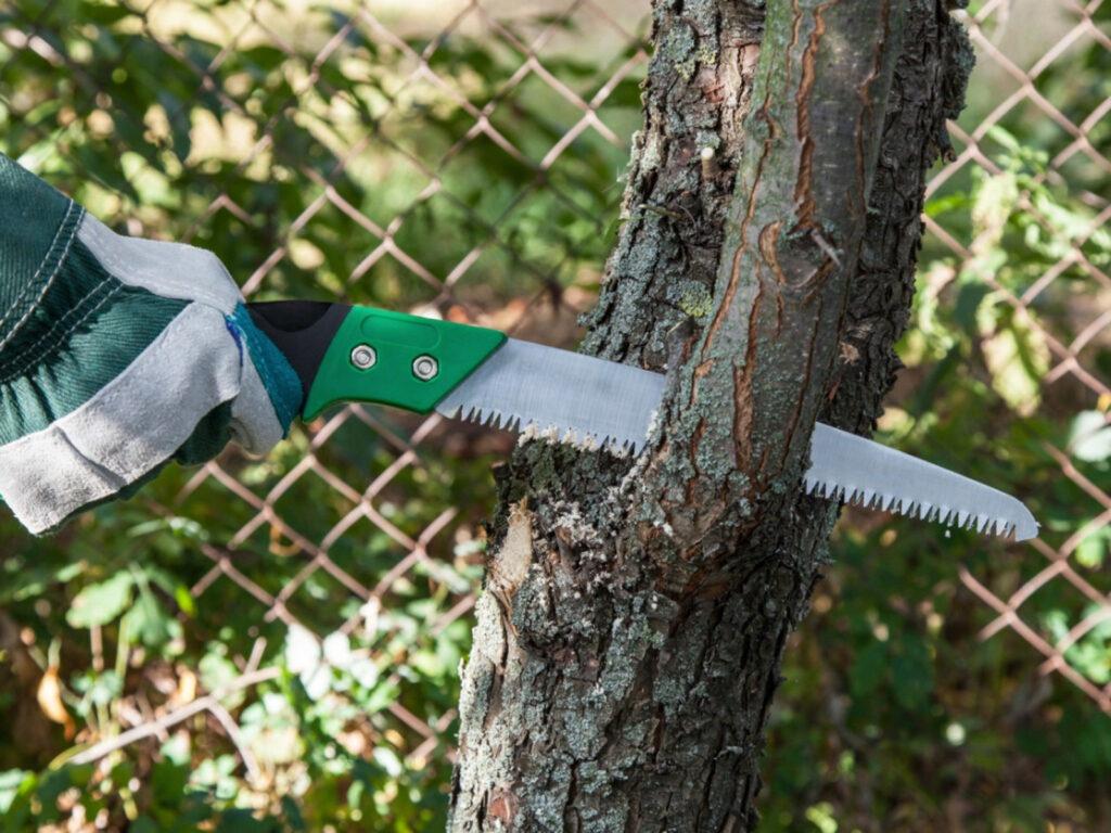 Best Garden Pruning Saw