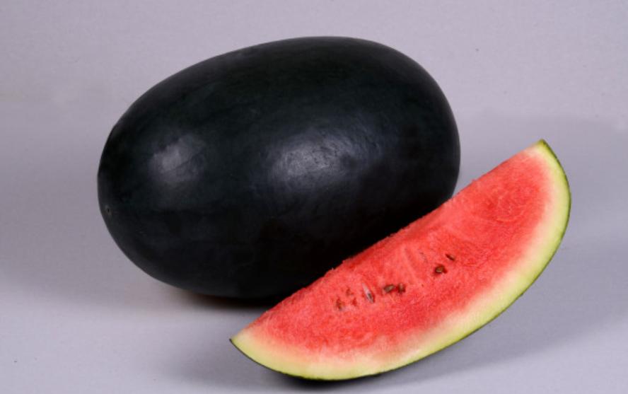 Icebox Watermelon Growing Guide