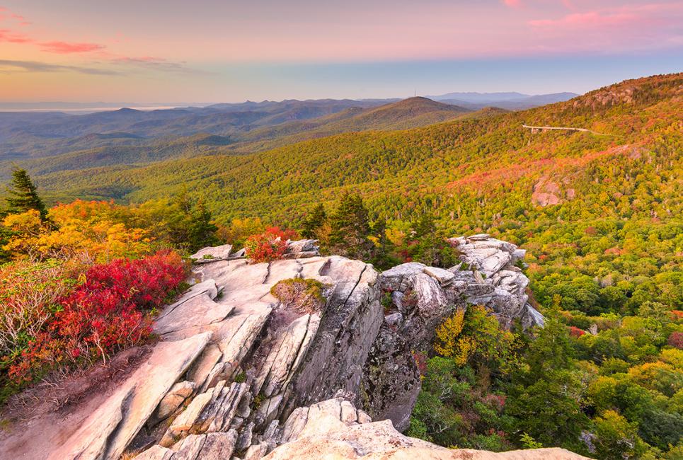 North Carolina Growing Zones Explained