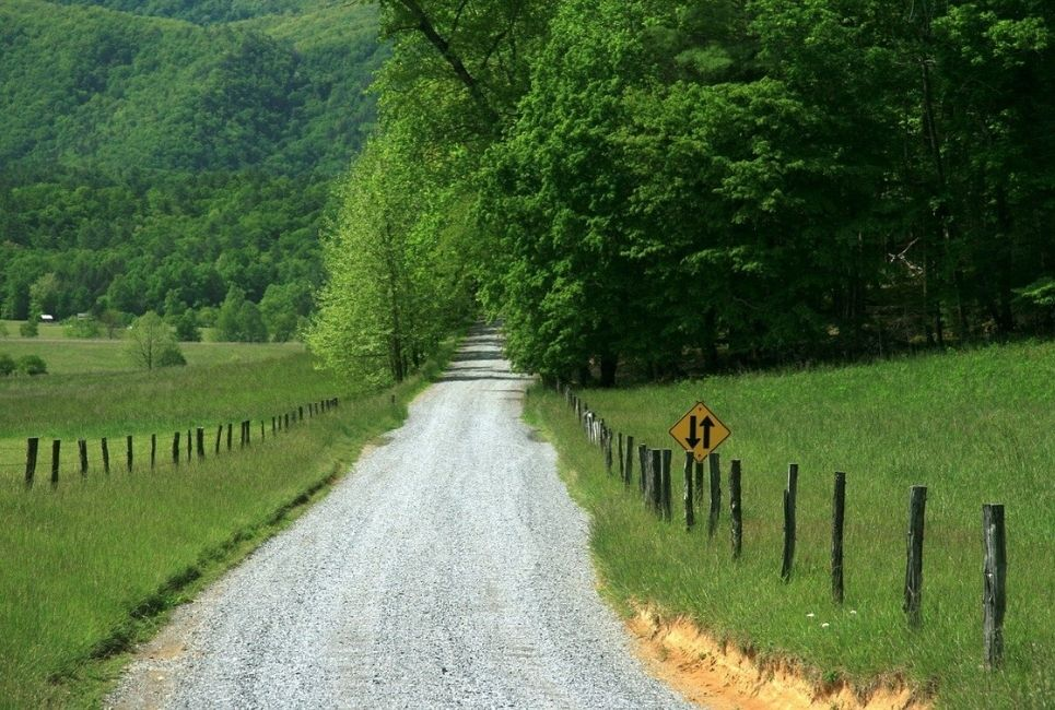 Tennessee Growing Zones Explained